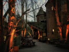 12x 100% Wireless LED Uplighter's at Alnwick Treehouse  - Photo Credit: Simon Athey
